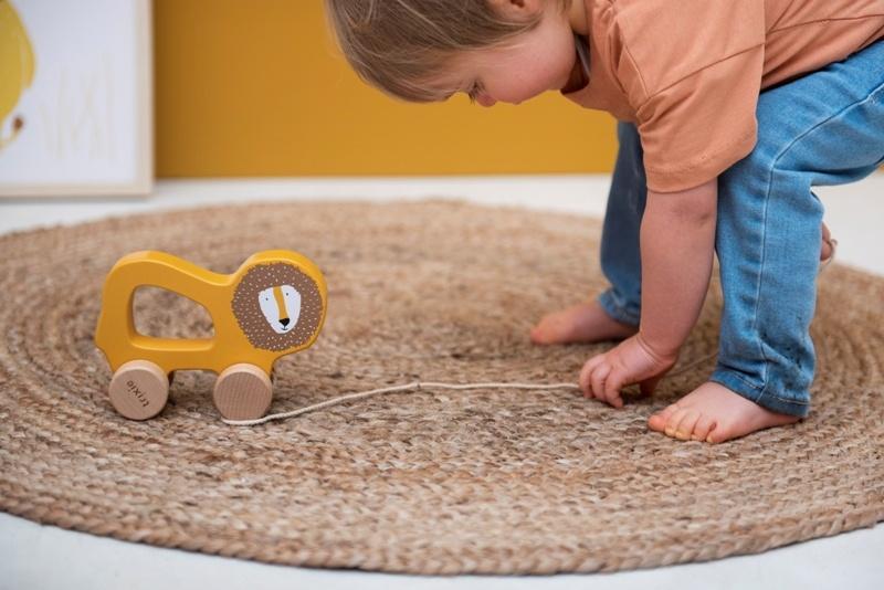 Trixie duurzaam houten speelgoed